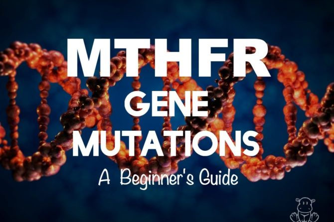 MTHFR Gene Mutations: A Beginner's Guide